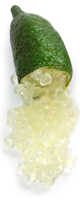 citron-caviar-jaune