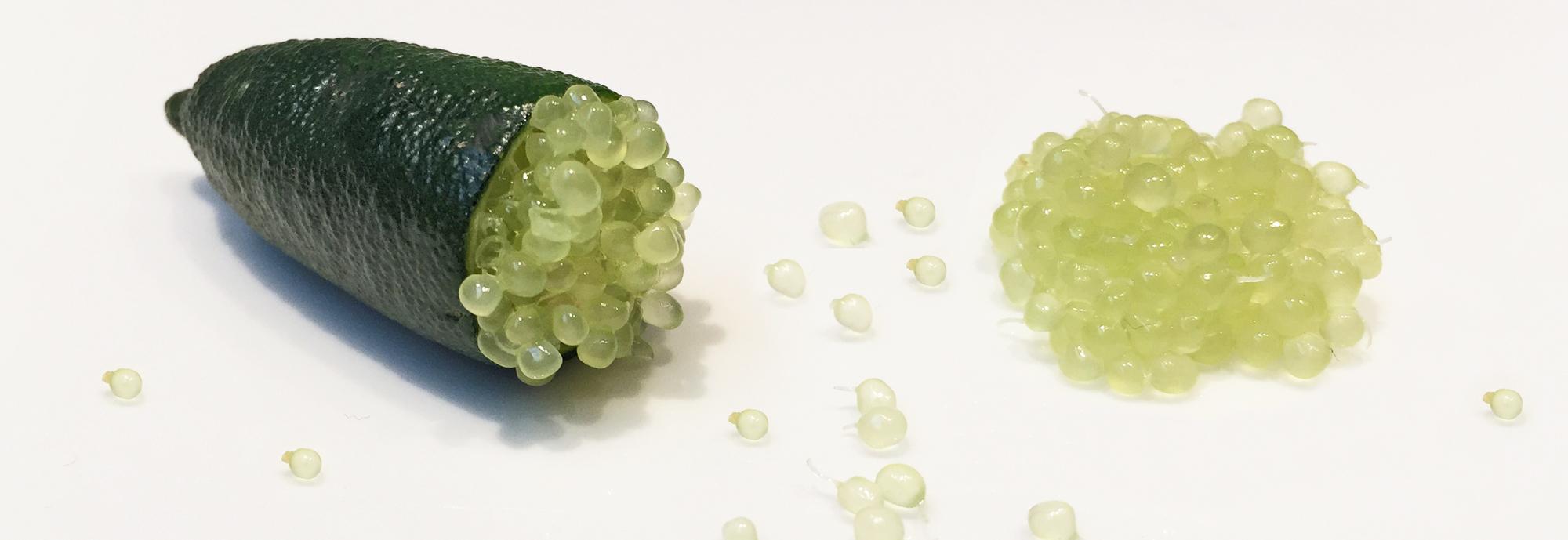 citron_caviar_jaune_coupé