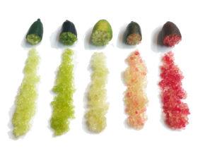citrons-caviar