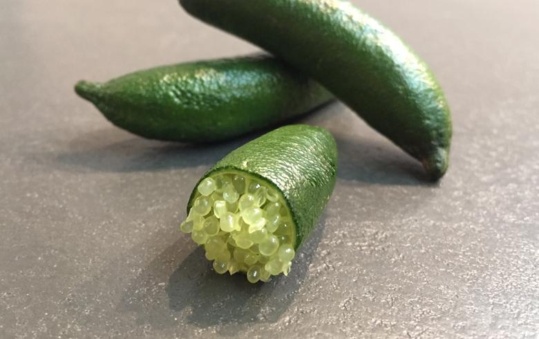 tasty_green_citron_caviar_jaune