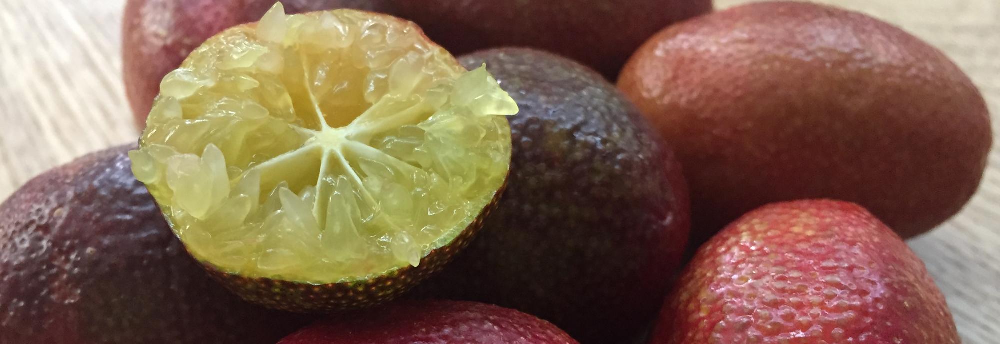 blood_lime_citron_caviar