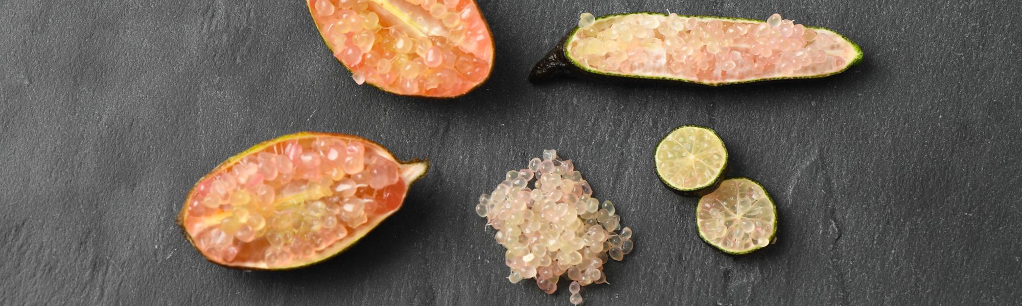Témoignage : Quand Jos de Koning rencontre le citron caviar